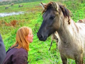 Paardencoaching | Mijn specialisatie is het coachen van mensen met behulp van paarden voor de doelgroep: kankerpatiënten, ex-kankerpatiënten en hun naasten.